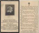 Oprinsen Maria x Schellekens 1911