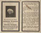 Vromans Johanna x Vermeulen 1920