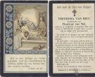 Riet Theodora v x v Mol 1914