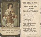 Visschers Felicia Flavia Maria 1919